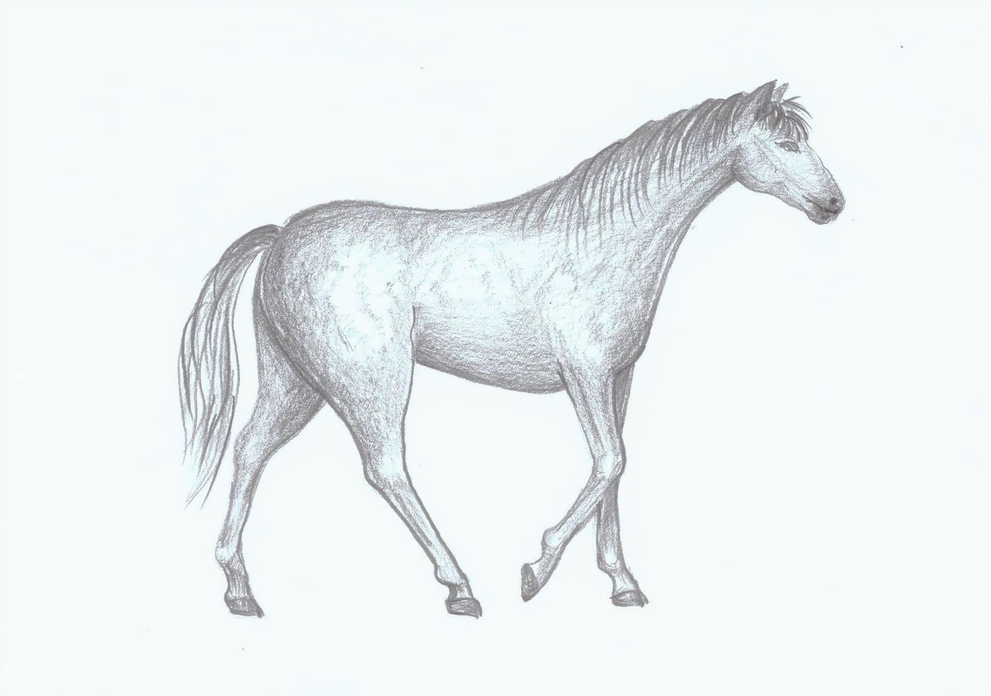 Jak Nakreslit Kone Atelier Sum